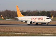 Boeing 737 -82R PEGASUS AIRLINE TC-ABP 40876 Mulhouse décembre 2015 (Thibaud.S.Photographie) Tags: boeing 737 82r pegasus airline tcabp 40876 mulhouse décembre 2015