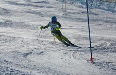 2Y7A1111 Martin Schilkrut, VN