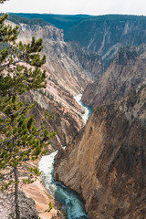 The Grand Canyon of the Yellowstone-Yellowstone-August2017-133 (mrcadams) Tags: river canyon landscape yellowstone
