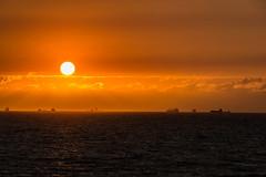 Sea Gull on the Move (*Capture the Moment*) Tags: 2017 cruise cruiseship fahrzeugeverkehr kreuzfahrt msdeutschland möve nordsee northsea reisebeginn schiffe seagull seereise sonne sonnendeck sonnenuntergang sonya7m2 sonya7mii sonya7mark2 sonya7ii sonyfe2470mmf4zaoss sonyilce7m2 startoftrip sun sundeck sunset vessels wetter anbord onboard warmup