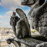Notre Dame-9919 thumbnail