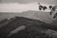 Untitled (Grzesiek.) Tags: beskidśląski mountains beskidy