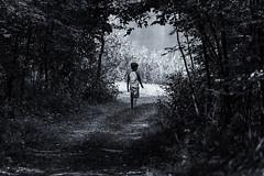 Transition (dshoning) Tags: hmbt boy path transition light dark walk change