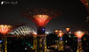 The Gardens by the Bay OCBC Skyway (Bright Ideas with Chan Udarbe) Tags: 1855mm d5000 f3556singapore gardensbythebay nikon travel trip