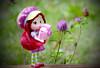 flower photography🌼 (sugarelf) Tags: strawberryshortcake photography doll flowers