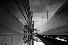 Abathon (maekke) Tags: zürich kreis5 urban reflection architecture puddlegram man fujifilm x100t 35mm switzerland ch bw noiretblanc pointofview pov streetphotography 2017