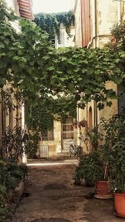 Arles  Bouches-du-Rhône