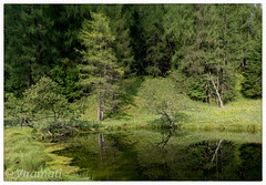 Laghetto Polentaia (Viramati) Tags: serdes dolomit dolomites italy italia lake reflections