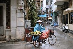 Fruit Bike Lady