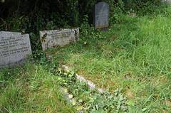 Gravesite - Arthur Tremayne Warne