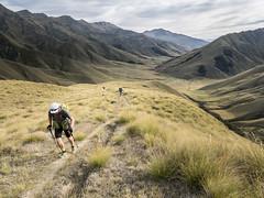 Motatapu Alpine Track (newzild) Tags: newzealand teararoa hiker tramper trail route long distance capereinga bluff nzl motatapu alpine track shania twain mutt lange aarn backpack pack trekking poles valley panasonic gm5 1232 lens