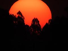 Fim do dia! (Márcio100) Tags: astro rei fim do dia sol sun fogo final entardecer sunset paraná brasil nikon p900