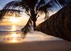 Klong Chao Beach, Koh Kut (TeunJanssen) Tags: kohkood kohkut thailand southeastasia asia island beach backpacking travel traveling olympus omd omdem10 palm palmtrees ocean sea sunset goldenhour dof klongchao paradise