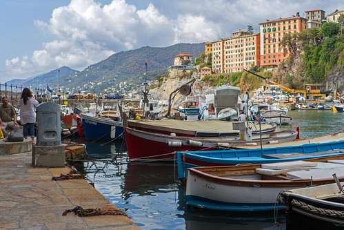 Camogli Harbour