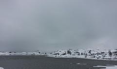 IMG_2541 (alessandro orfanù) Tags: norway lofoten vesteralen hurtigruten winter snow northernlight