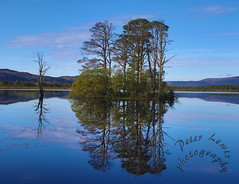 Reflection at Loch Mallachie (blootoonloon1( No to Badger Cull)) Tags: landscape nature colours water reflection highlands scotland view