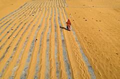 Working woman! (ashik mahmud 1847) Tags: line pattern bangladesh working woman lady people d5100