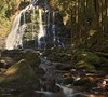 Nelson Falls, Tasmania (taszee63) Tags: tasmania hdr panorama nelsonfalls worldheritage waterfall verticalpanorama 3xp national park