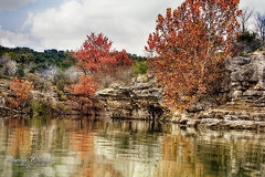 Lake Travis Fall Color
