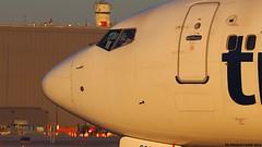 PB190098 TRUDEAU (hex1952) Tags: yul trudeau canada boeing b737 b737800 transat airtransat