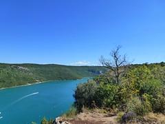 Limski fjord (Timm aus Kiel) Tags: limski fjord kroatien istrien istra croatia