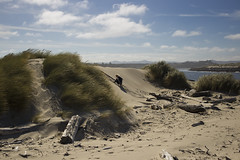 (K.Logan.Sullivan) Tags: coast dunes florence northjettybeach oregon