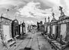 (Ben holt) Tags: benholt nikon d80 bw blackandwhite neworleansla nola cemetery