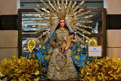 Nuestra Señora, Madre de Dios (Fritz, MD) Tags: cofradiadeloshijosdemaria salvereginagrandmarianexhibit2017 grandmarianexhibit marianexhibit santamariamadrededios nuestraseñoramadrededios marymotherofgod