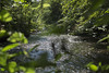 Minnehaha Creek (eddee) Tags: minnesota urban park nature environment minnehaha creek water