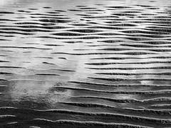 low tide abstract (marianna_a.) Tags: tide pattern abstract blackandwhite bw monochrome monochromatic greyscale mariannaarmata trinitybay quebec canada