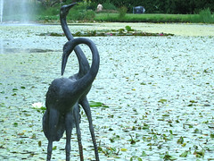 Heron Lake, Van Dusen (Ruth and Dave) Tags: vandusengardens vandusen botanicalgardens garden pond lake lilypond lilypads heron sculpture birds green waterlilies vancouver heronlake