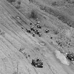 Vietnam War 1967 - Buffalo roundup thumbnail