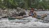 img_5788_36080345240_o (CanoeMassifCentral) Tags: canoeing femunden norway rogen sweden