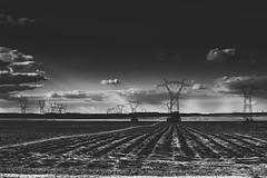 Connexions électriques (Meculda) Tags: monochrom france noiretblanc noirblanc blackandwhite blackwhite champs extérieur ligne électrique paysage landscape nikon 35mm d7200