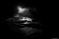 Désert du Néguev (BenoitGEETS-Photography) Tags: a6000 sony chameau camel désert néguev israël toys figurine microcosme nuit night lune moon bn bw noiretblanc nb dune sand sable monochrome geets benoitgeets misterblue blackwhite