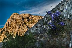 Montenegro (v.sellar) Tags: bay bayofkotor kotor