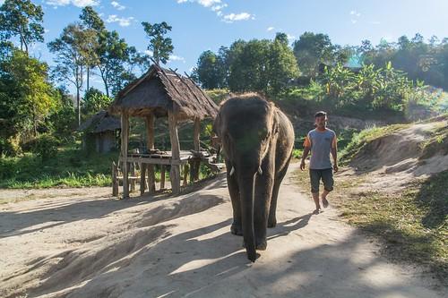 trekking chiang mai - thailande 4