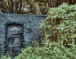 The door to the woods.