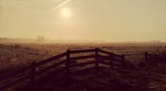 sunrise nature eastermar fryslân fence friesland (Photo: Dimitri W on Flickr)