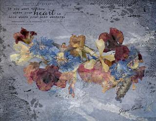 Dried Flowers and Hummingbird