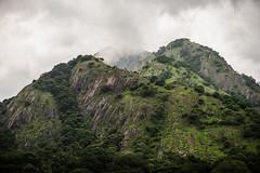 Dhoni Hills, Western Ghats, Kerala (Bindu&Sudhir) Tags: dhonihills westernghats kerala greenery monsoon