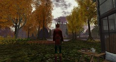 Autumn arrives in Rosehaven