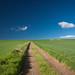 Flinder's Fields (Kieran Campbell) Tags: aberdeenshire insch scotland alba field garioch road unitedkingdom