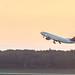 Delta A330 (DTW)