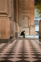 Solitude at State Library of Victoria (SemiXposed) Tags: man phone bird melbourne victoria australia solo alone mobile cell
