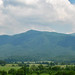 Cades+Cove+tectonic+window+%26+Blue+Ridge+%28Great+Smoky+Mountains%2C+Tennessee%2C+USA%29+31