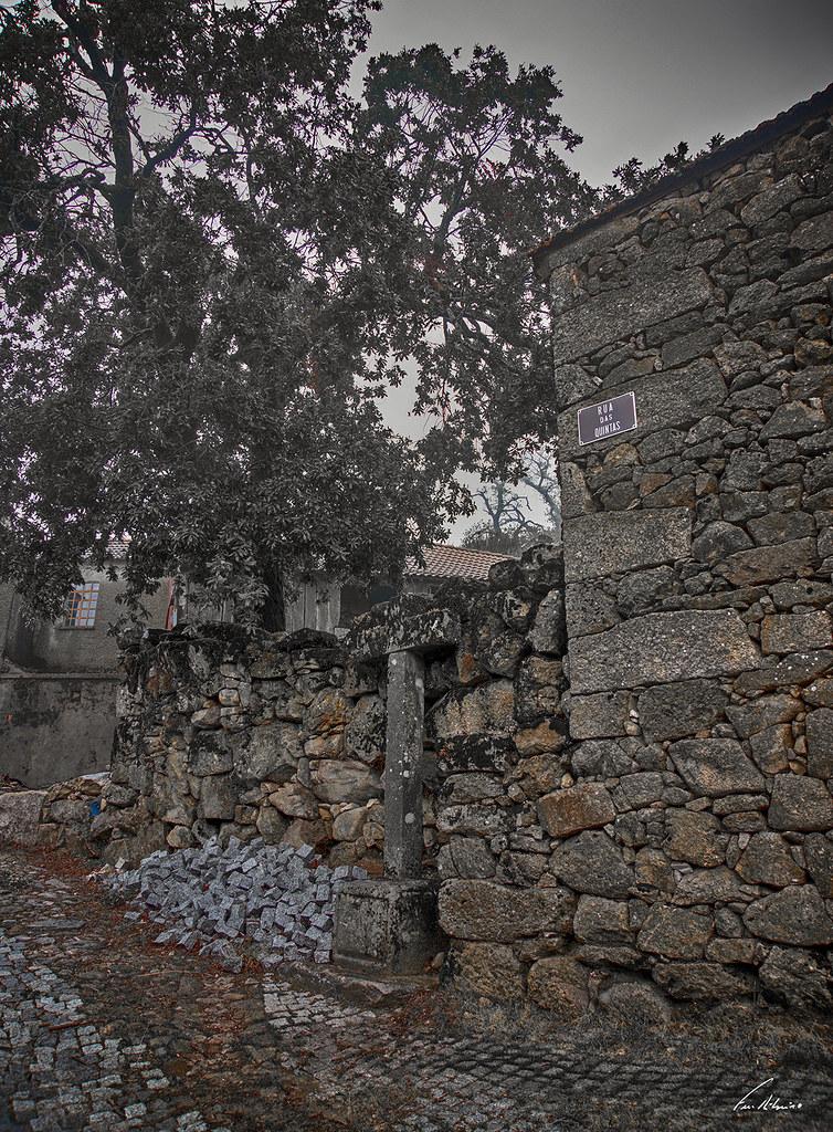 1600-paredes (133)