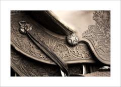 Memories (DJ Wolfman) Tags: saddle leather brown old worn horses details oklahoma olympus olympusomd em1markii 12100mmf4zuiko zd zuiko micro