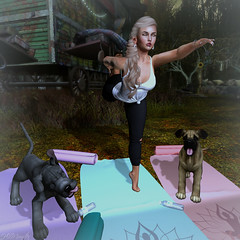 Because, Yoga (Hunnie.VonM) Tags: secondlife sl gachagaurdians event gacha stealthic blueberry swallow jian chicachica deciduous