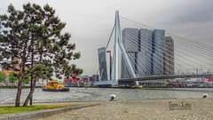 Nieuwe Maas, Erasmusbrug, De Rotterdam, Rotterdam, Netherlands - 5203 (HereIsTom) Tags: webshots travel europe netherlands holland dutch view nederland views you sony cybershot hx9v nature sun tourists cycle vakantie fietsvakantie cycling holiday bike bicycle fietsen mei centre rivier nieuwe vessel city ship rotterdam 2017 water tower erasmusbrug boot town de bridge buildings river centrum wilhelminapier may stad zuid wilhelminakade maas boat
